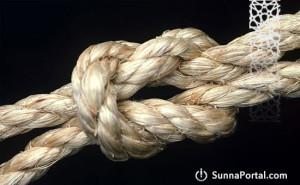 sheykh-rabi-kogda-mojno-nazyvat-sebya-uchenikom-sheykha