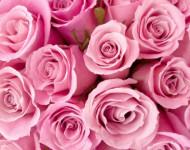 Устаз Назратулла: Краткий урок о жёнах Пророка ﷺ