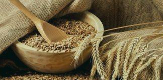 Пшеница - один из продуктов для закята фитр