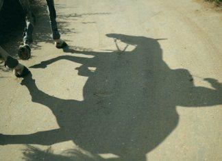 """""""Не будь как каретная лошадь!"""" - хизбия, ее описание"""