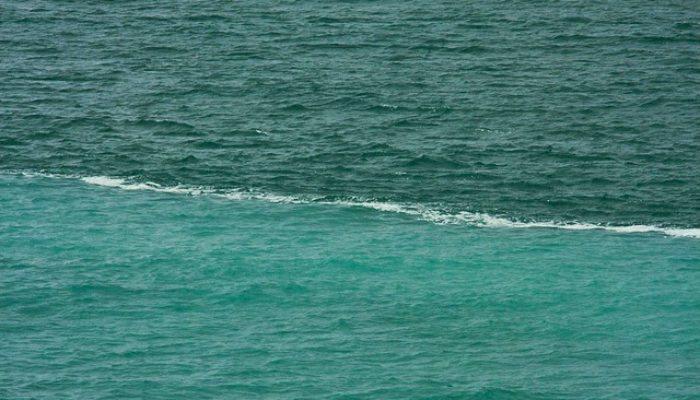часть косметики два океана которые не сливаются фото мастер-классами школе